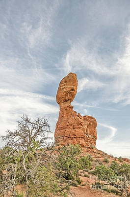 Photograph - Balanced Rock by Sue Smith