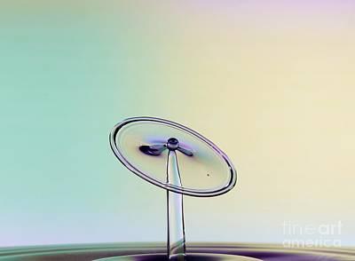 Photograph - Balancing Act.  by Heidi Southworth
