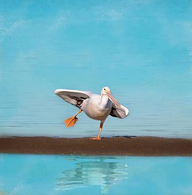 Photograph - Balancing Act by Kim Hojnacki