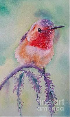 Rufous Hummingbird Painting - Balancing Act by Patricia Pushaw