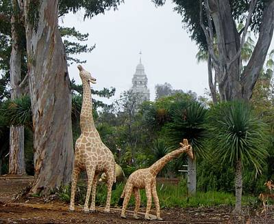 Photograph - Balboa Park Bell Tower Overlooking Giraffe Statue by Phyllis Spoor