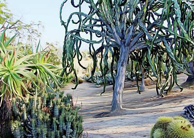 Photograph - Balboa Plants by Munir Alawi