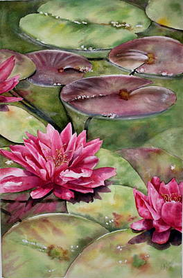 Balboa Water Lilies Art Print by Mary McCullah