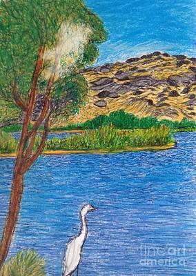 Balboa Drawing - Balboa Swan by Ishy Christine