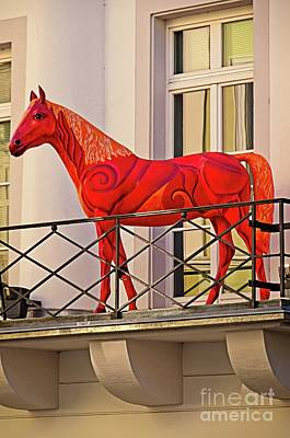 Photograph - Balcony Horse Baden-baden Germany by Elzbieta Fazel