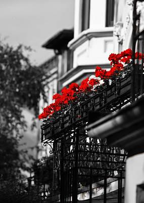 Balcony Roses Art Print