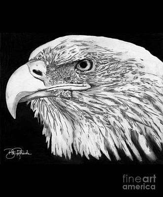 Bald Eagle #4 Art Print by Bill Richards
