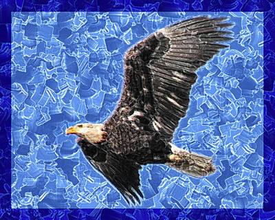 Soaring Painting - Bald Eagle Abstract by Rayanda Arts
