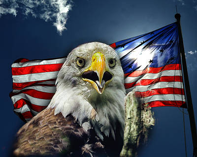 Photograph - Bald Eagle And American Flag Patriotism by Bill Swartwout Photography