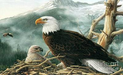 Eaglet Painting - Bald Eagle And Eaglet  by Pg Reproductions
