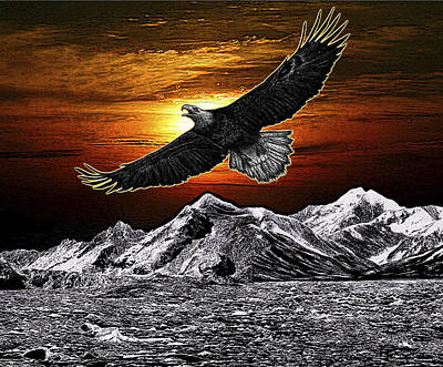 Mountain Sunset Digital Art - Bald Eagle At Sunset by Rose Borisow
