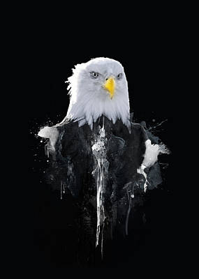 Bald Eagle Art Print by BONB Creative