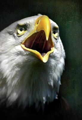 Digital Art - Bald Eagle Call by Georgiana Romanovna