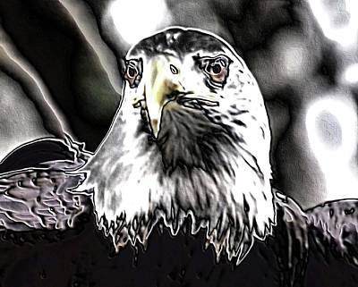 Digital Art - Bald Eagle Digital by Charles HALL