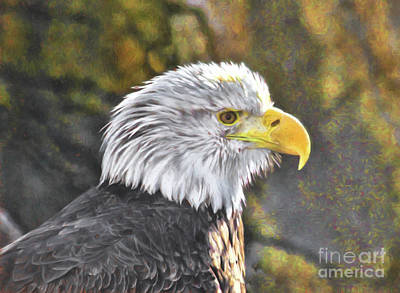 Painting - Bald Eagle Digital by Steven Parker