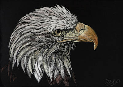 Painting - Bald Eagle Eye by Margaret Sarah Pardy