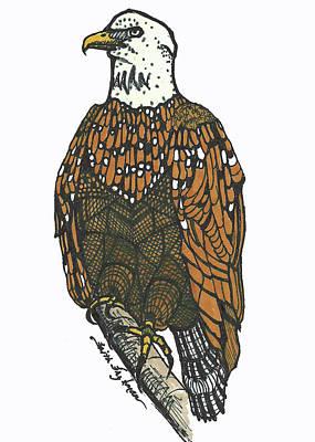 Bald Eagle Art Print by Faith Frykman