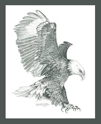 Raptors Drawing - Bald Eagle In A Dive by Robert Wilson