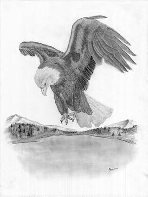 Eagle In Flight Drawing - Bald Eagle In Flight by Russ  Smith