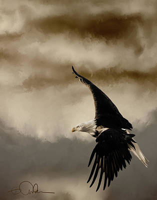 Digital Art - Bald Eagle In Sepia by Gloria Anderson