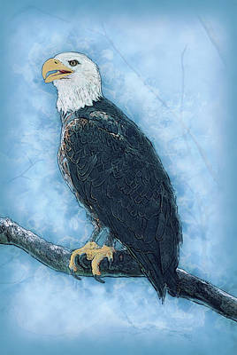 Preditor Painting - Bald Eagle by Jack Zulli