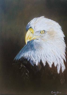 Painting - Bald Eagle by Jean Yves Crispo