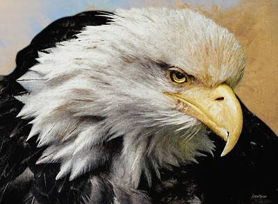 Painting - Bald Eagle - Painting by Ericamaxine Price