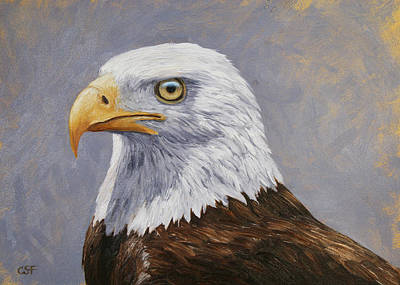 Bald Eagle Portrait Art Print by Crista Forest