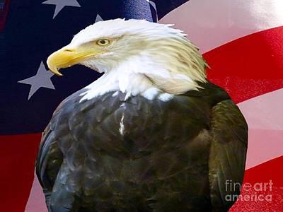 Photograph - Bald Eagle Usa by Susan Garren