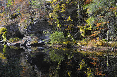 Bald River Autumn Reflection Art Print by Darrell Young