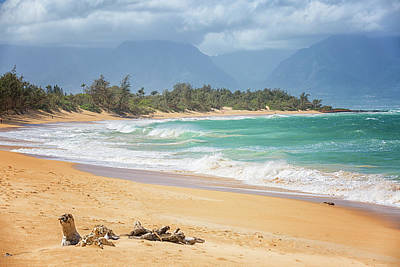 Photograph - Baldwin Beach by Randy Hall