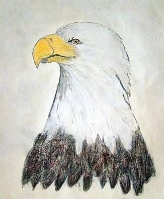 Drawing - Baldy by J R Seymour