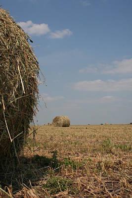 Illinois Farm Land Photograph - Bale Fc by Dylan Punke