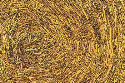 Photograph - Bale Texture 7347 by Jerry Sodorff
