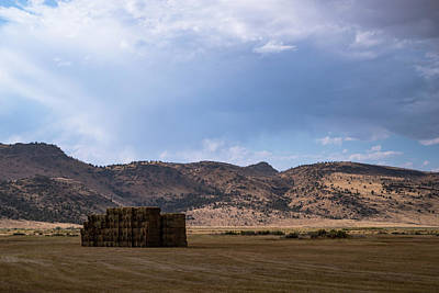 Photograph - Baled And Stacked by Steven Clark