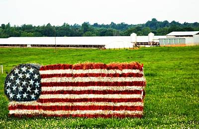 Photograph - Baled Flag by Bob Pardue