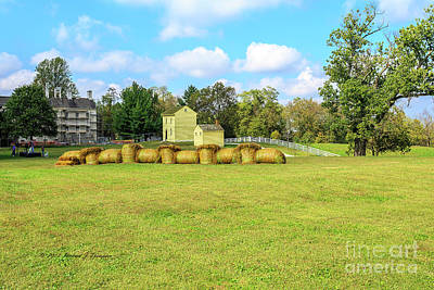 Photograph - Baled Hay In A Grassy Field by Richard J Thompson
