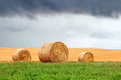 Contour Farming Photograph - Bales And Layers by Todd Klassy