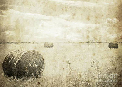 Photograph - Bales In The Field by Hal Halli