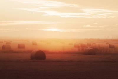 Roundup Photograph - Bales In The Mist by Todd Klassy