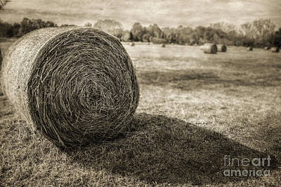 Photograph - Bales by John Anderson