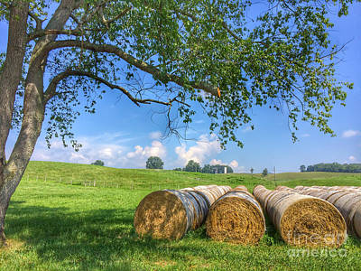 Photograph - Bales Of Hay by Kerri Farley