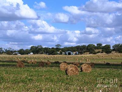 Bales Of Hay Art Print by Therese Alcorn