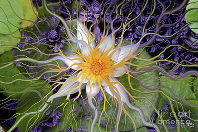 Bali Dream Flower Art Print by Christopher Beikmann