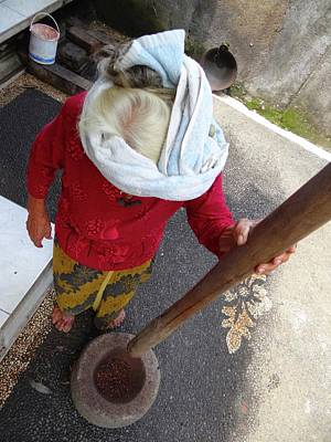 Photograph - Balinese Lady Grinding Coffee by Exploramum Exploramum
