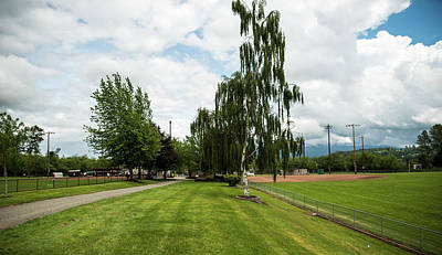 Photograph - Ball Fields Birch Tree And Clouds by Tom Cochran