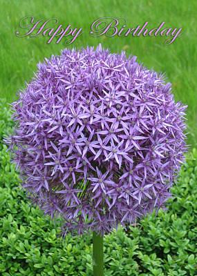 Martinspixs Photograph - Ball Of Purple Flowers Happy Birthday  by Martin Matthews