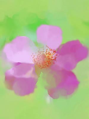 Digital Art - Ballerina Rose Watercolorish by Susan Lafleur