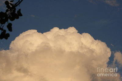 Photograph - Balloon Cloud by Mary Mikawoz
