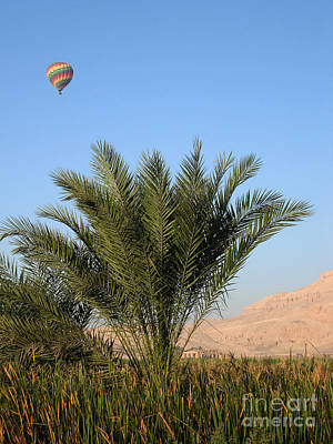 Photograph - Balloon Over Luxor by Richard Deurer